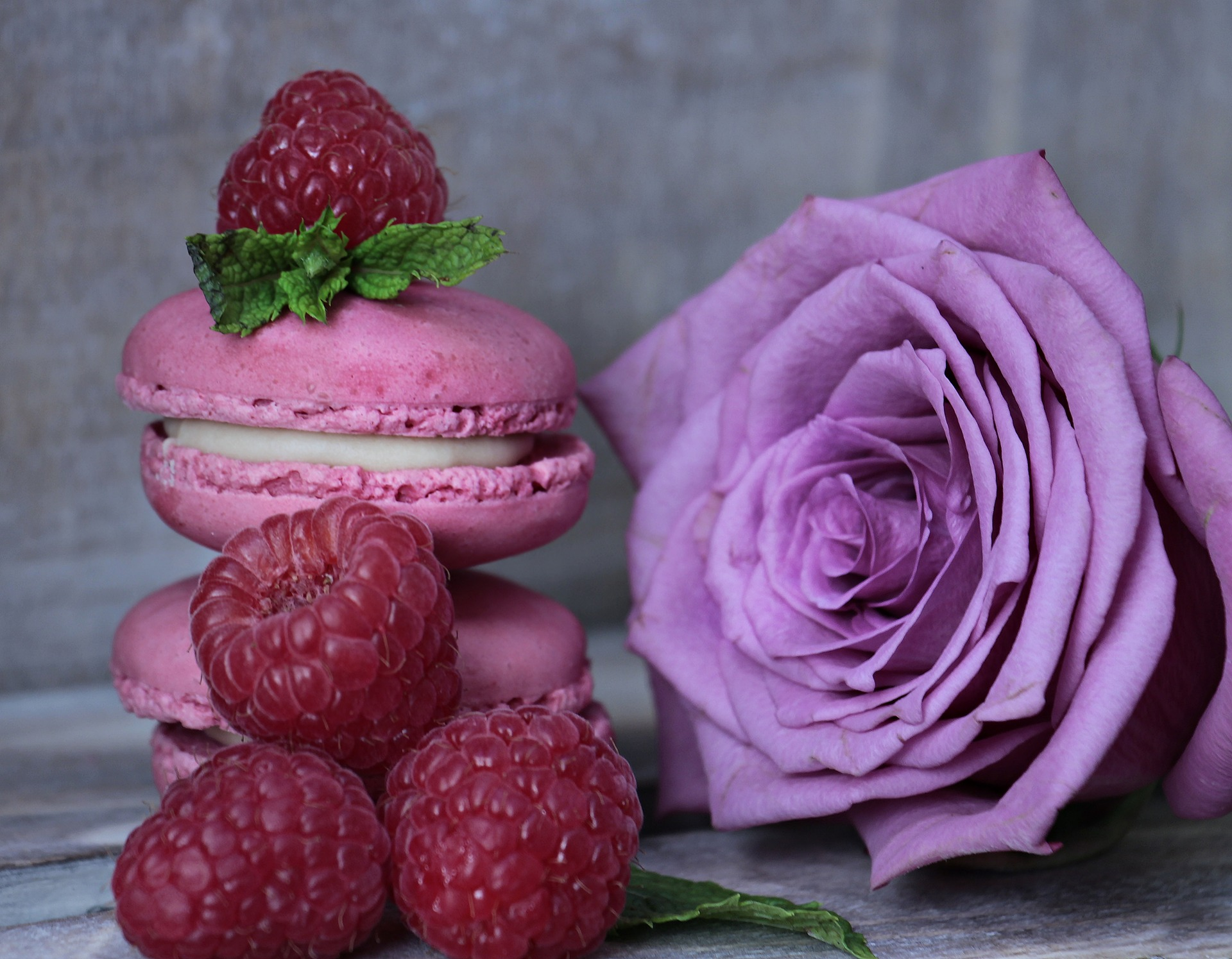 macarons and french food